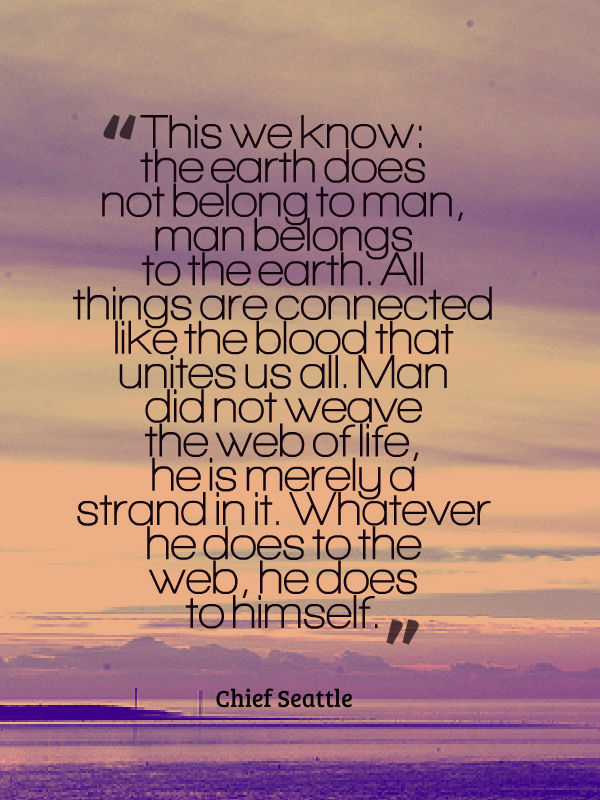 The Speech Of Chief Seattle Letters From An Unknown Author